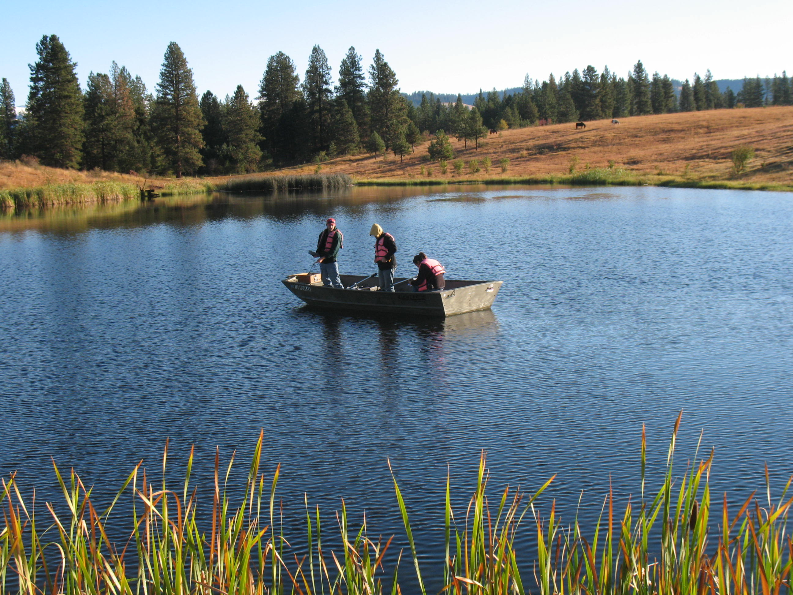 Projects for Lake wilhelm fishing